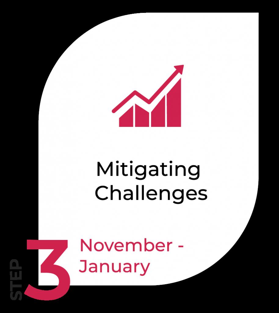 Image of Timeline step 3 - Mitigating Challenges